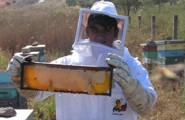 apicultor-42